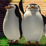 Den dětí s Portusem - Mise Albatros