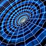 Pavouci virtuálního světa